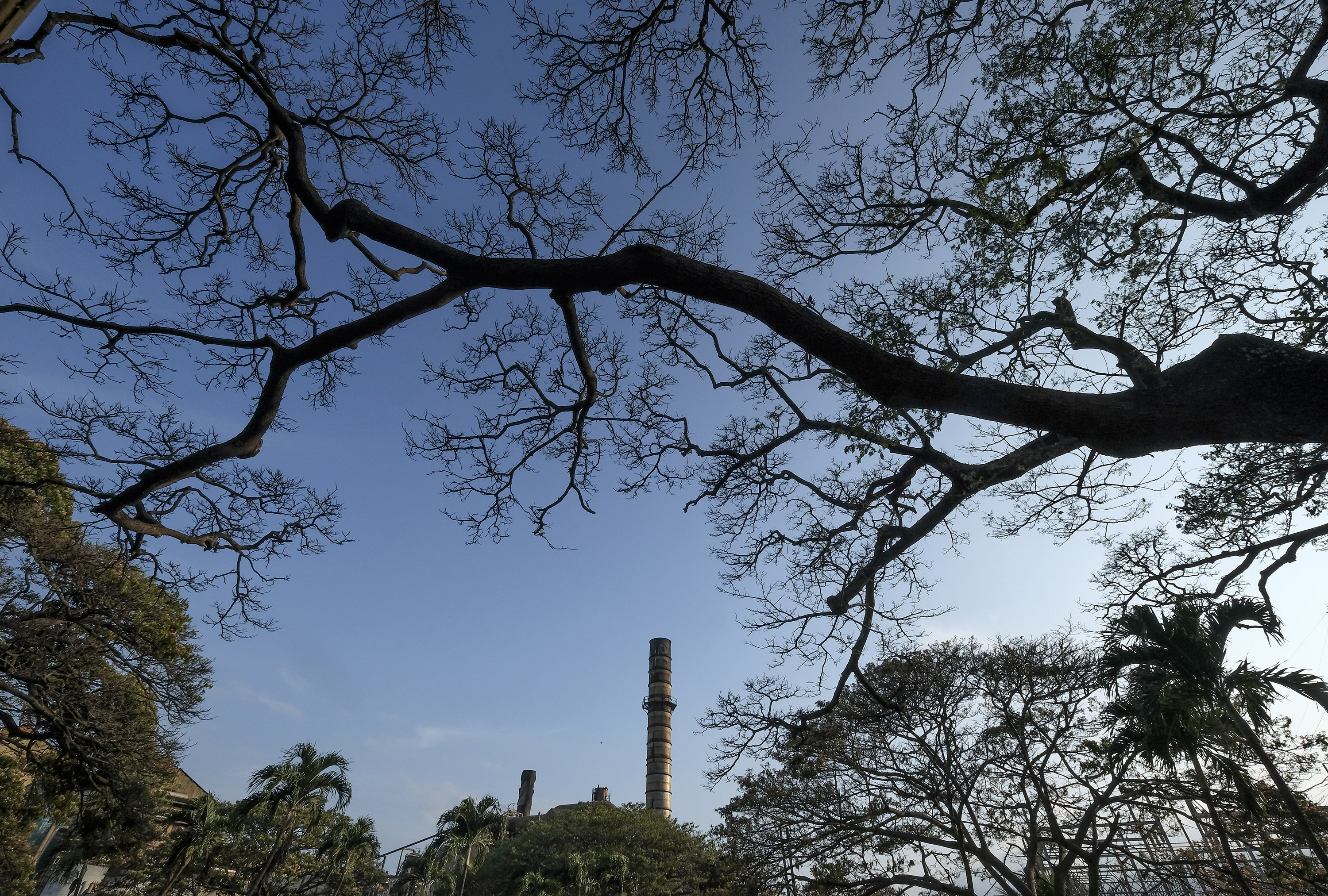 A smokestack towers above the grounds of Hawaiian Commercial & Sugar in Puunene, Hawaii, in May. The mill ceased production in December 2016. MUST CREDIT: Washington Post photo by Bonnie Jo Mount