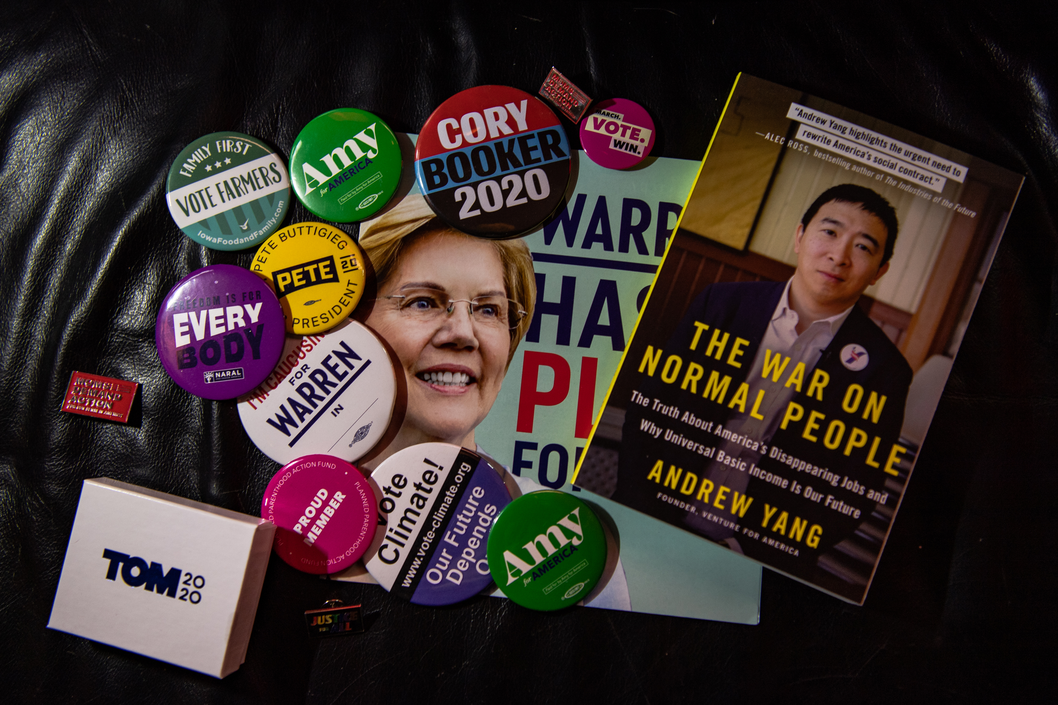 Tanya Keith's collection of Democratic buttons, pins, posters and books. MUST CREDIT: Washington Post photo by Salwan Georges